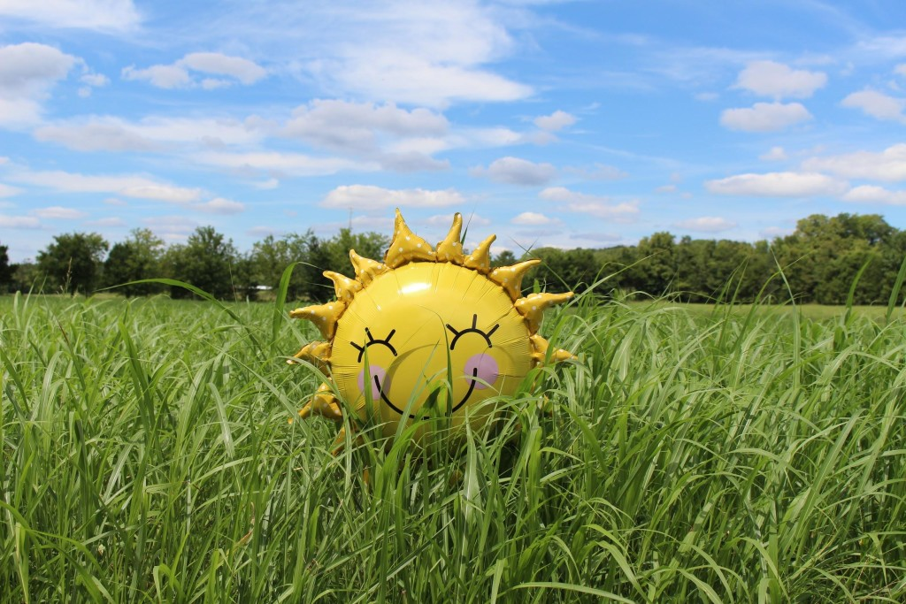 yellow plastic sun with emoji faces in a grass field