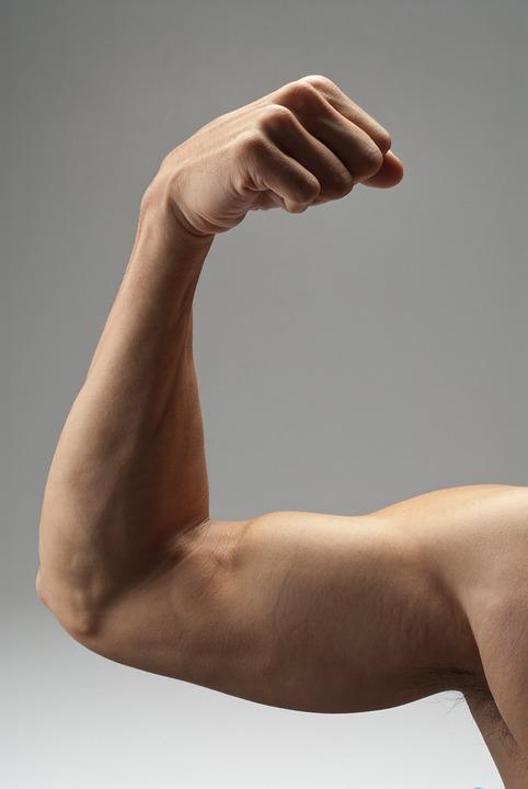 a muscular mans arm