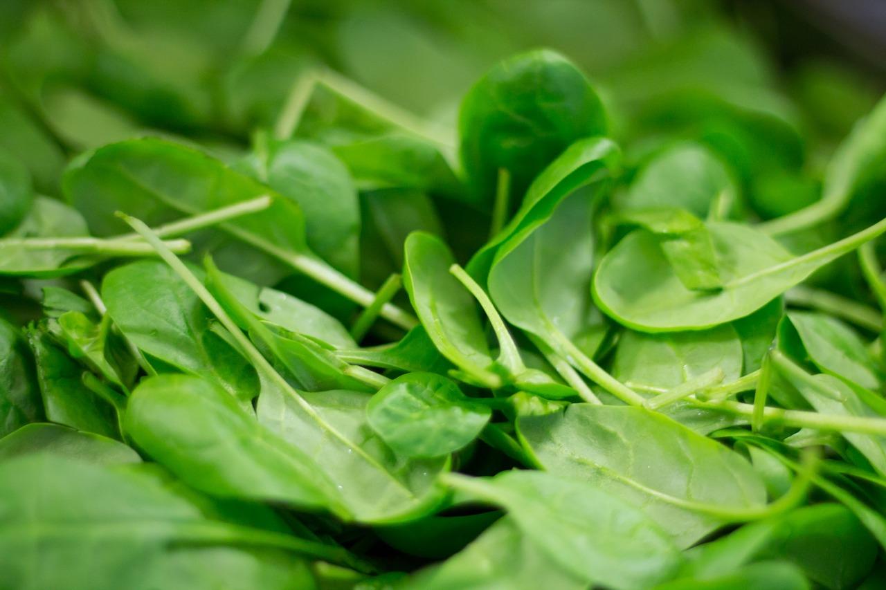 spinach beet