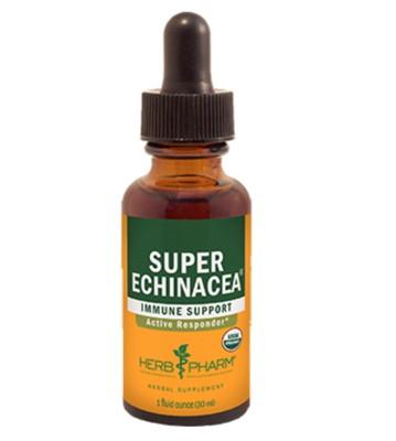 Super Echinacea 4 oz