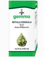Betula Pendula (seed) 125ml