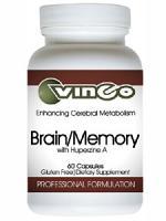 Brain/Memory