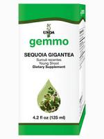 Sequoia Gigantea - 125 ml