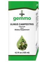 Ulmus Campestris 125ml