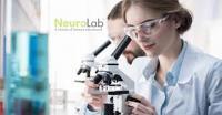 NeuroLab HP Neurotransmitter Profile