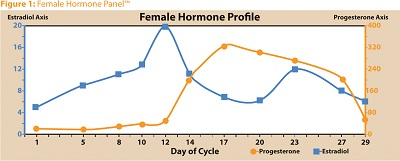 Phases of Female Cycle